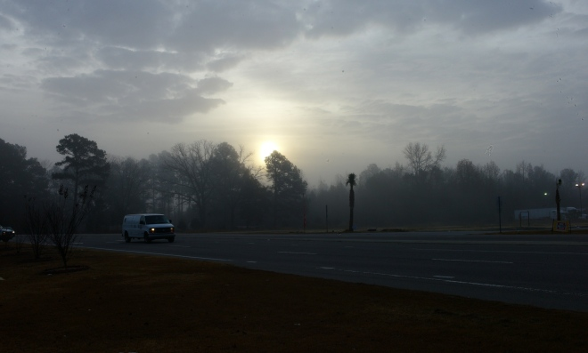 December, 2012. North Carolina.  Paul Goldfinger photograph. Copyright. Left click for full view