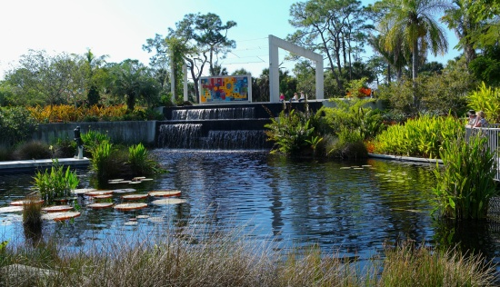 Botanical Gardens in Naples, Florida.  A beautiful and fascinating place to visit.